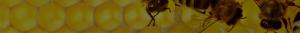 Пчелен восък 2